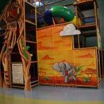 IMG 8388 150x150 Charlie's Safari – Lacey, WA