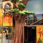 IMG 8389 150x150 Charlie's Safari – Lacey, WA
